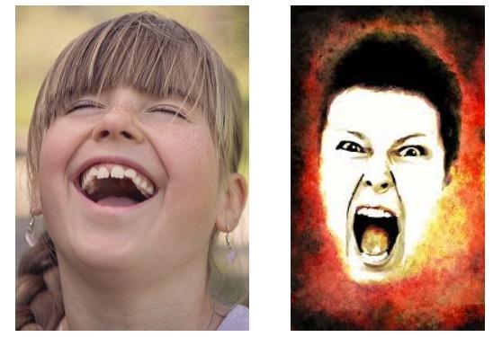 喜び(好き)と怒り(嫌い)の表情