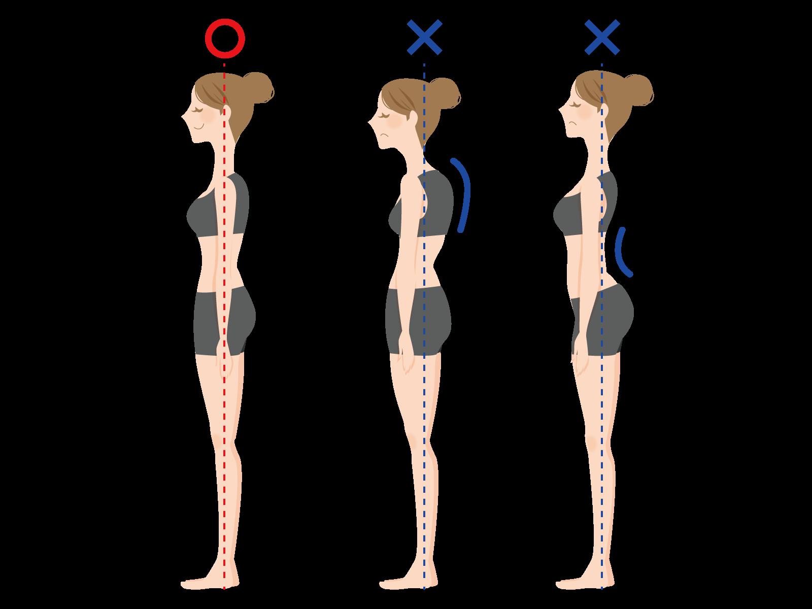 正しい姿勢はかかとから伸びた一本の線が腰を通って肩、耳へ向かう
